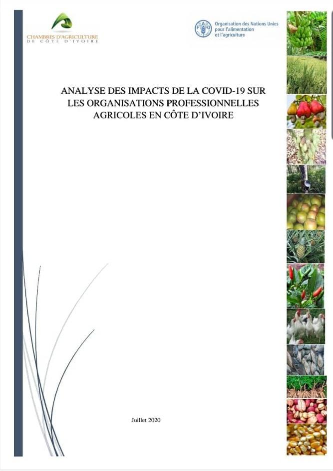 Analyse des impacts de la COVID-19 sur les Organisations Professionnelles Agricoles en Côte d'Ivoire